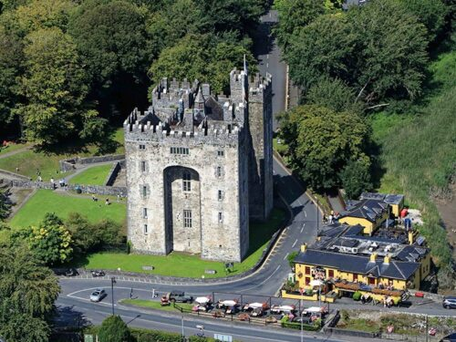 Bunratty Castle and Durty Nellies Pub