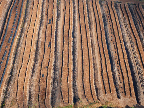 Stacked turf in a peat bog