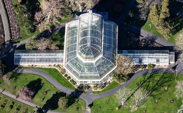 Great Palm House Botanic Gardens